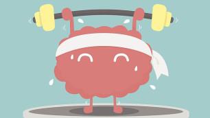 brain muscle